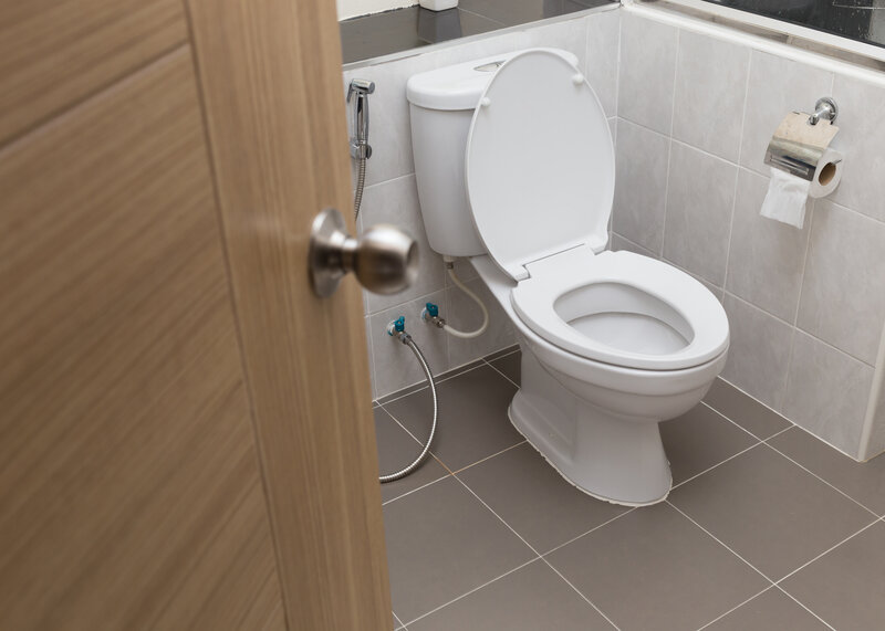 Toilet Inspection Kansas City